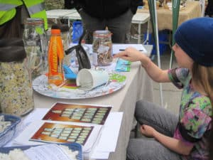 The Fag Butt Challenge at Worth Matravers Fête 29th May 2017.